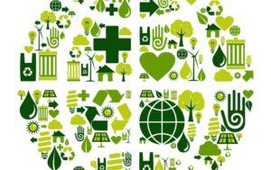 Acorn Environmental - ISO 14001